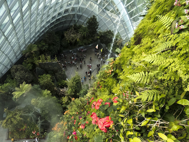 Cloud Forest from above at the Gardens by the Bay in Singapore