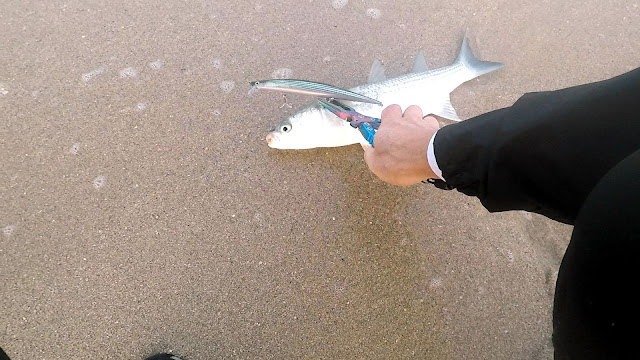 LISA%2BO%2BMUJEL - Spinning de invierno desde playa 🌊🌊