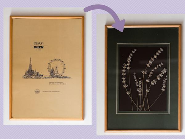 315. DIY - suszone kwiaty w ramce| szybki sposób na dekoracje