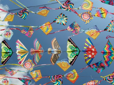 Why People Celebrated Makar Sakranti | Hindu Festival Makar Sakranti