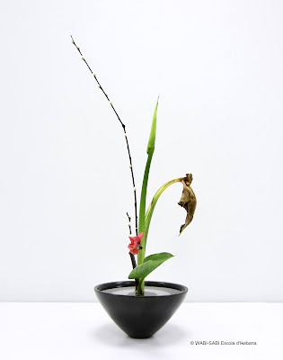 Ikebana-shoka shimputai-wabisabi-escoladikebana