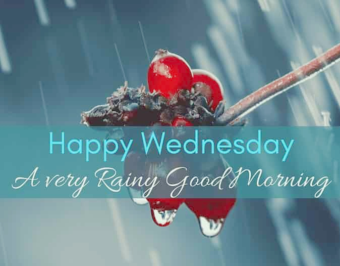 good morning rain images