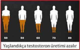 yaşa göre testosteron