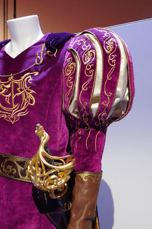 Enchanted Prince Edward costume sleeve