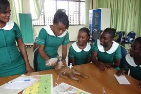 Assinman Nursing and Midwifery Training College Admission