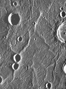 Wrinkle ridges on Mercury's surface