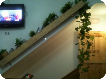 Crear-y-decorar-un-negocio-sostenible