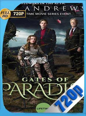 Las Puertas del Paraiso (2019) HD[720P] latino[GoogleDrive] DizonHD