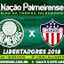 Jogo Palmeiras x Junior Barranquilla Ao Vivo 16/05/2018 [Narração]