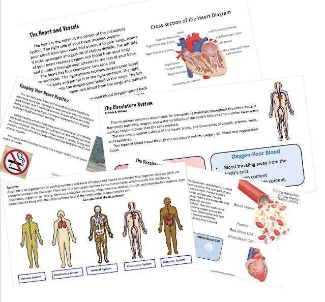 Informational text passages on the circulatory system