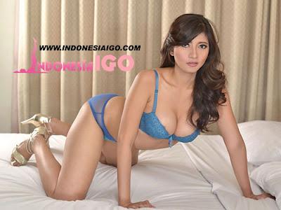 http://www.indonesiaigo.com/