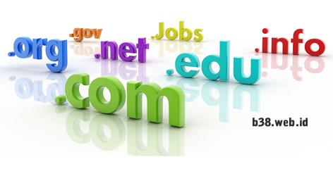 perbedaan domain dan hosting