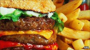 Menu Calorie Counts