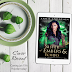 Cover Reveal - Sister of Embers & Echoes by Annie Anderson