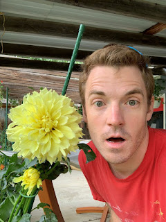 Man's face next to yellow Dahlia