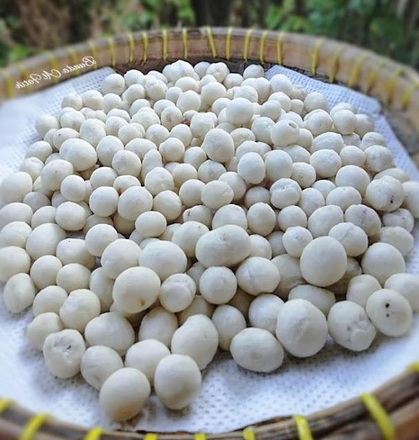 Resep Cara Membuat Kacang Atom atau Kacang Sukro