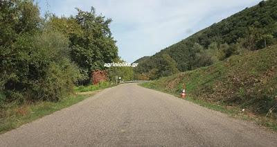 Αποτέλεσμα εικόνας για agrinio like κυκλοφοριακές