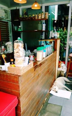 タイの喫茶店無いで寝ている犬です。