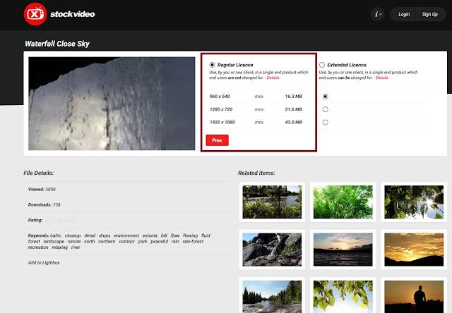 xstockvideo-flash-formatos