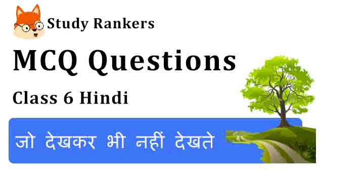 MCQ Questions for Class 6 Hindi Chapter 11 जो देखकर भी नहीं देखते Vasant