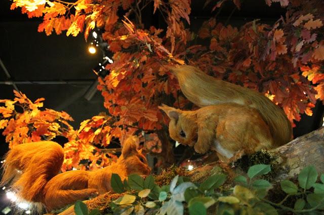 model squirrels in burnt orange autumnal trees at Beatrix Potter exhibition