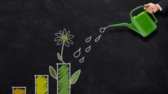 Perbedaan Pertumbuhan dan Perkembangan