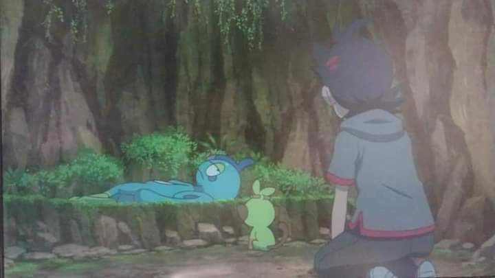 Drizzile Triste Jornadas Pokémon