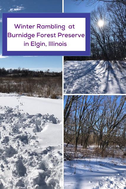 Winter Rambling Through a Tranquil Landscape at Elgin, Illinois's Burnidge Forest Preserve