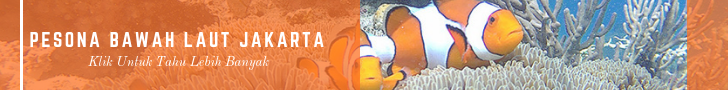 paket wisata pulau kelapa dan dolphin islnd
