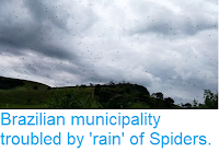 https://sciencythoughts.blogspot.com/2019/01/brazilian-municipality-troubled-by-rain.html