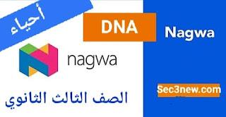 الجزء الاول من أسئلة بنك المعرفة في DNA من موقع نجوي أحياء ثالثة ثانوي