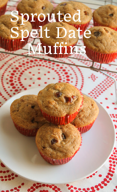 Food Lust People Love: Sprouted spelt date muffins pair the nuttiness of spelt with the natural sweetness of dates. These are the perfect breakfast or snack any time of the day.