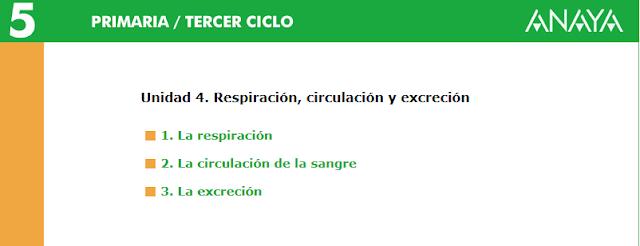 http://www.ceipjuanherreraalcausa.es/Recursosdidacticos/QUINTO/datos/02_Cmedio/datos/05rdi/ud04/unidad04.htm