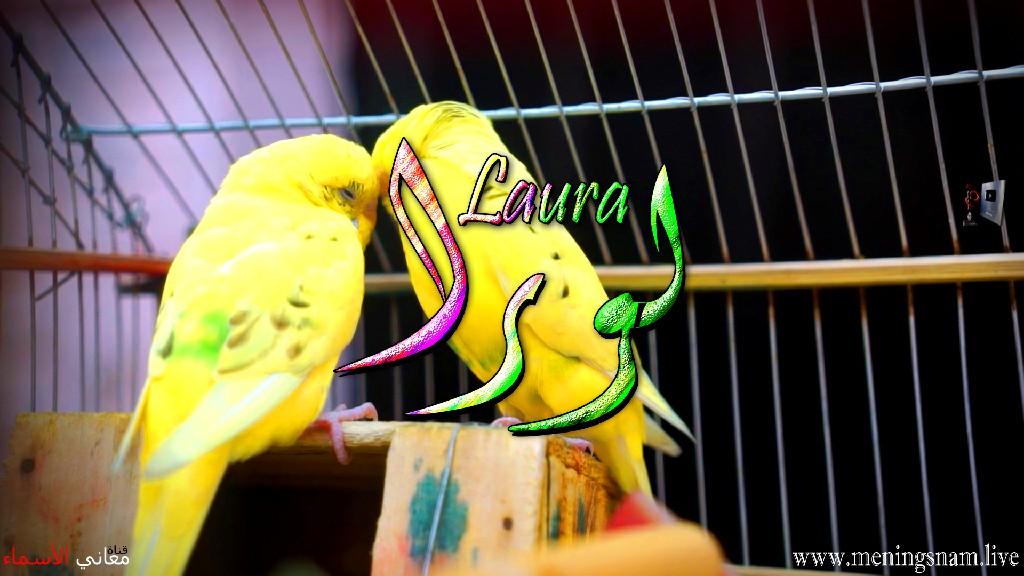 معنى اسم لورا, وصفات, حاملة, هذا الاسم, Laura,