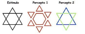 Diferencia percepción y percepto