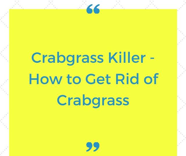 Crabgrass Killer - How to get rid of Crabgrass