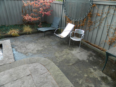 Cabbagetown Toronto Backyard Fall Cleanup After by Paul Jung Gardening Services--a Toronto Gardening Company