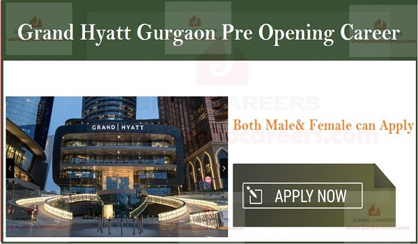 Current Jobs in Gurgaon- India, New jobs in Gurgaon- India,