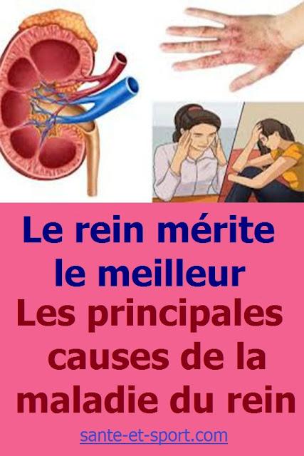 causes de la maladie du rein