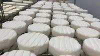 Neue Käserei in der Region Moskau