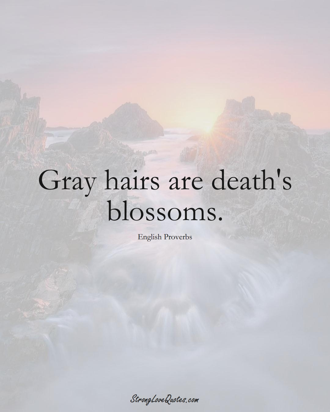 Gray hairs are death's blossoms. (English Sayings);  #EuropeanSayings