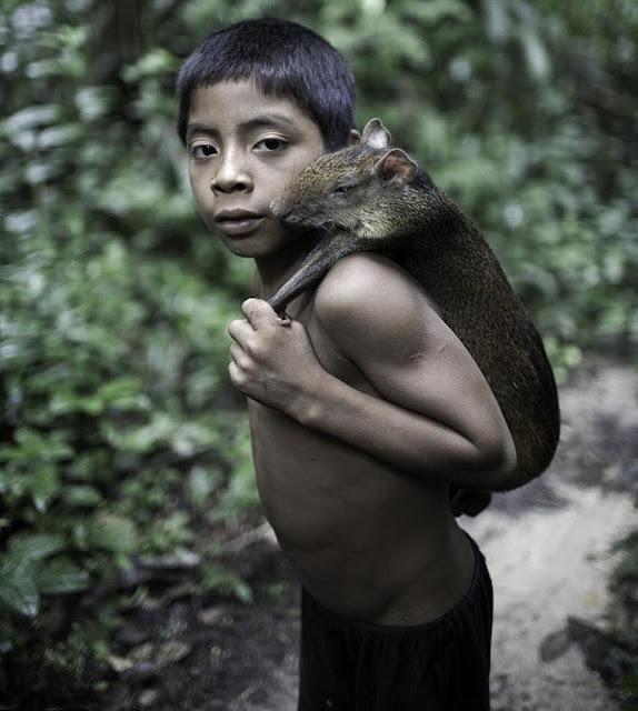Người Awa buộc phải chấp nhận lối sống du mục để thoát khỏi nạn diệt chủng
