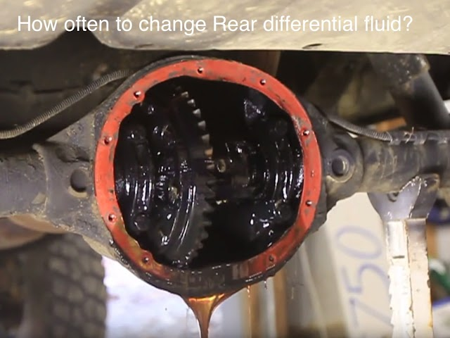 How often to change Rear differential fluid?