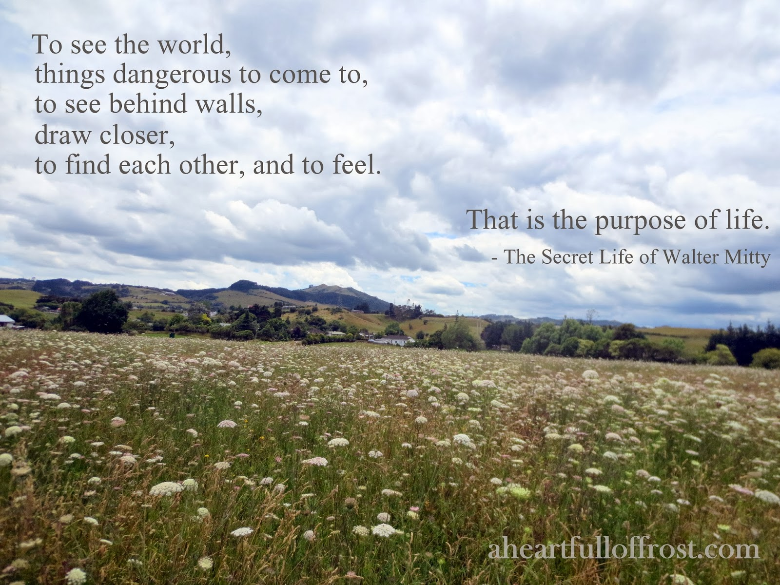 The Secret Life Of Walter Mitty Purpose Of Life Quotes ...