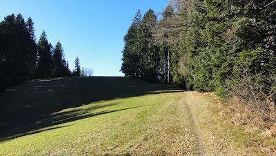Singletrail zur Hornbachegg