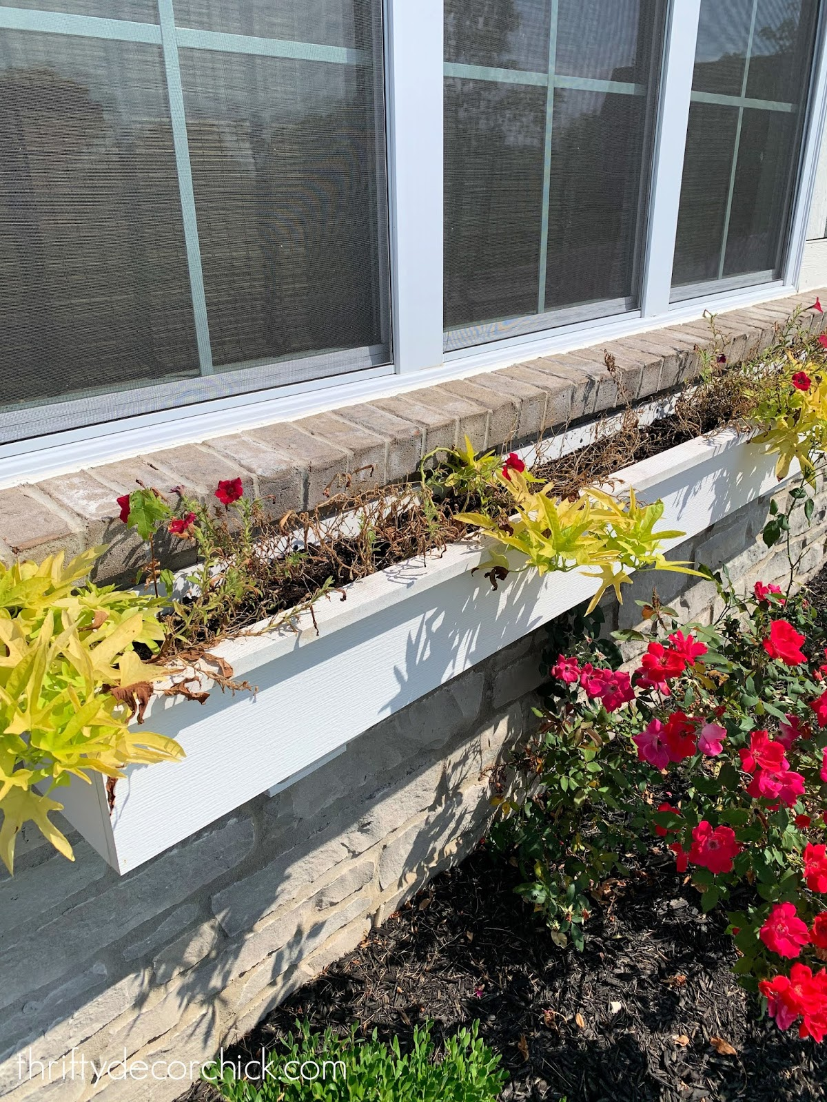 Transitioning to fall window boxes