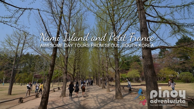 Top Things to do in Nami Island Korea Travel Guide Blog 2018