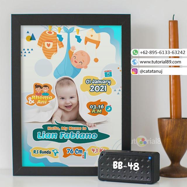 Biodata Bayi Costume Unik Kode BB48 | Hijau Putih