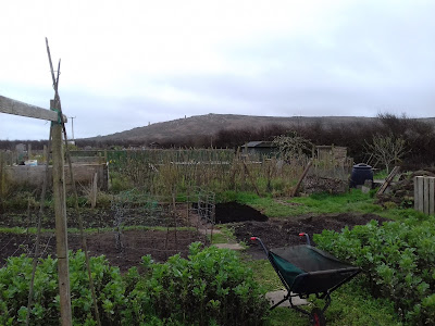 St Ives Cornwall Allotment - March 2017