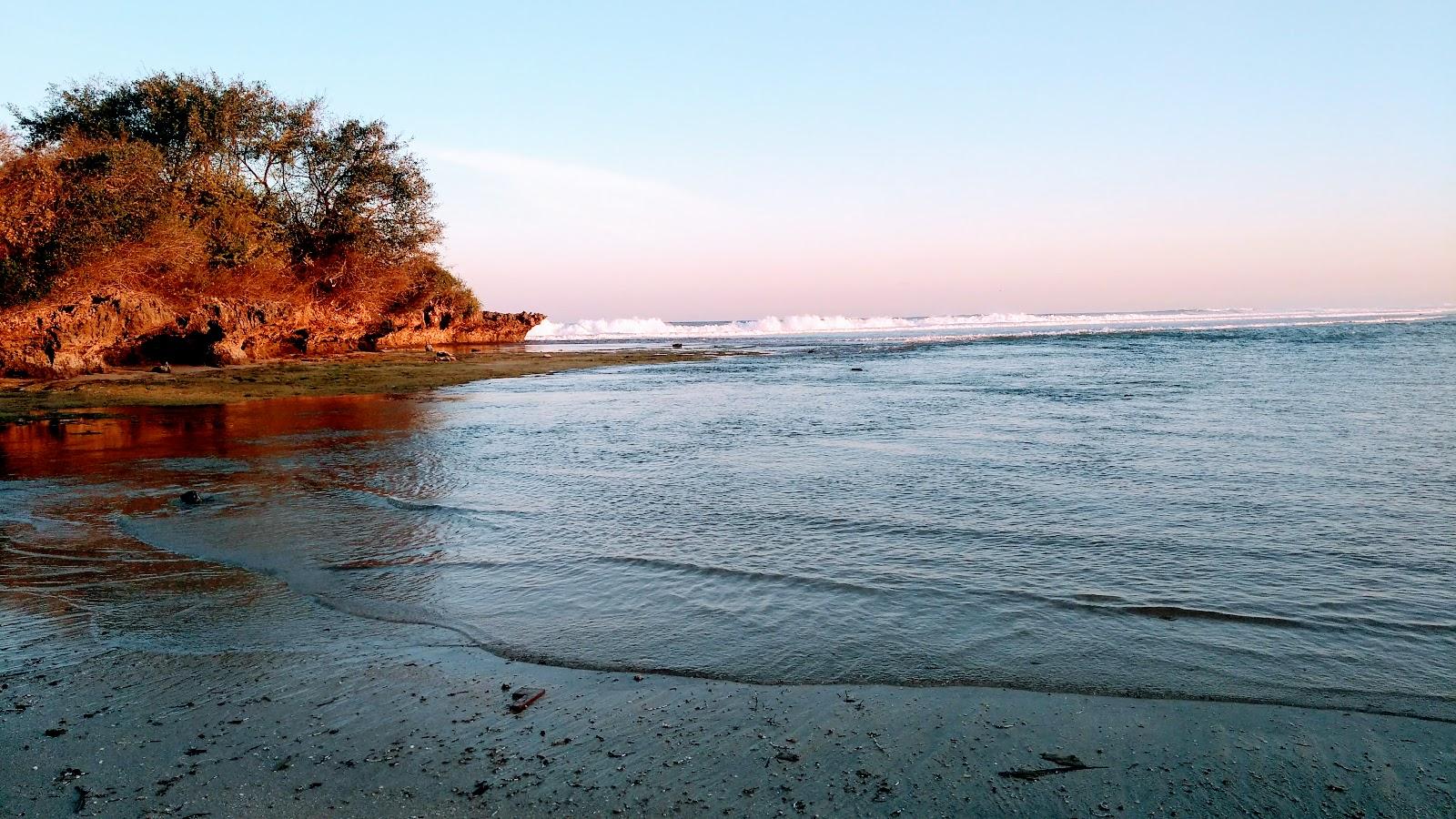 Bali Rokotukset